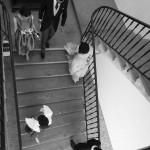 Boda Alicia y Ariel - Cenital escalera - Santiago Stankovic Fotógrafo