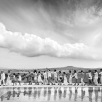 Boda Marina y Jaime - Bailando la conga - Santiago Stankovic Fotógrafo